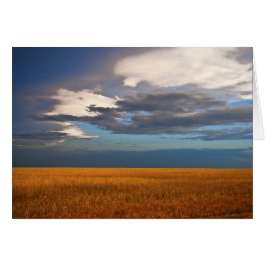 Wheat Field Fine Oil Painting Note Card