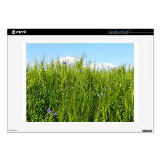 Wheat field in spring / Weizenfeld Decals For Laptops