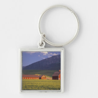 Wheat field in the Wallowa Valley, Just outside Keychain