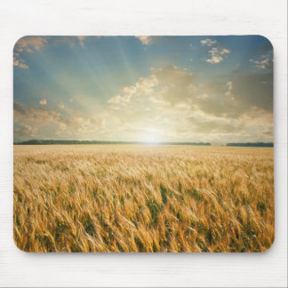 Wheat field on sunset mouse pad