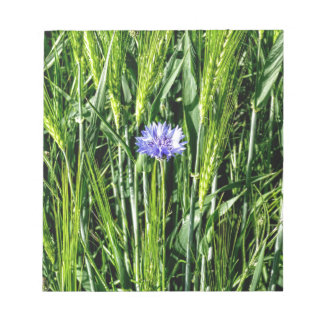 Wheat field with Cornflower Notepad