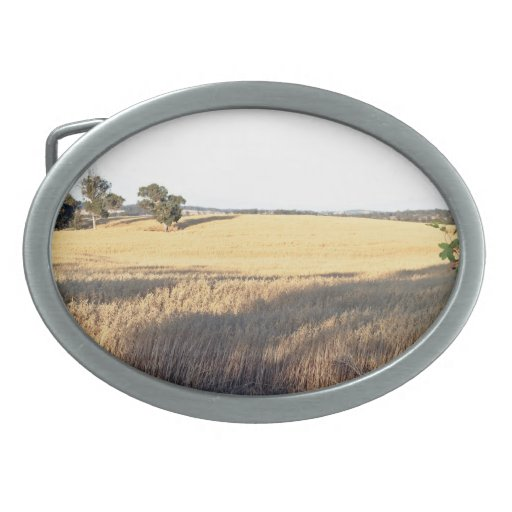 Wheat field with shadows and lights belt buckles
