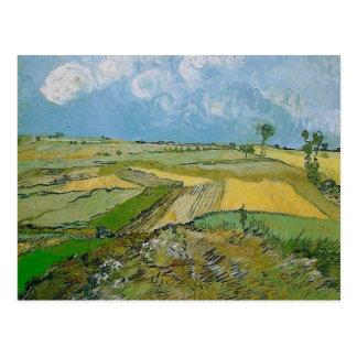 Wheat Fields Auvers Clouded Sky Van Gogh Fine Art Postcard