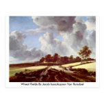 Wheat Fields By Jacob Isaackszoon Van Ruisdael Post Cards