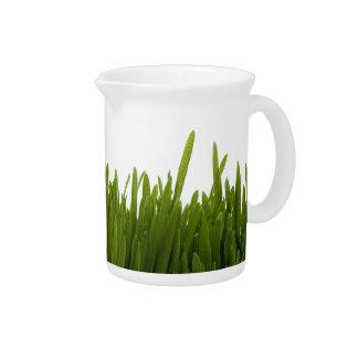 Wheat Grass Pitcher