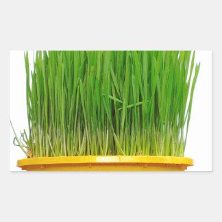 Wheat Grass Rectangular Sticker