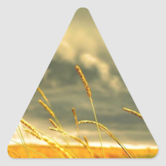 Wheat in the storms' view triangle sticker