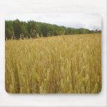 Wheat Plants Mouse Mat