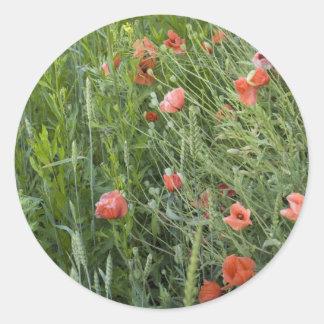 wheat&poppies round stickers