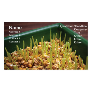 Wheat sprouts business card