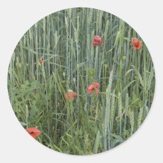wheat stripes round stickers