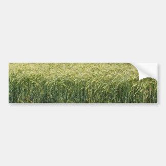 Wheat - Tasty! Car Bumper Sticker