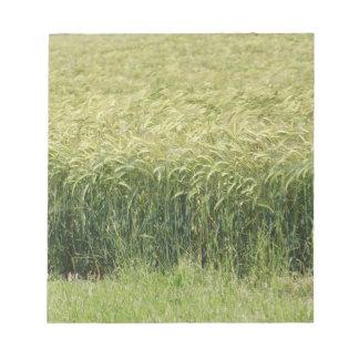 Wheat - Tasty! Memo Pad
