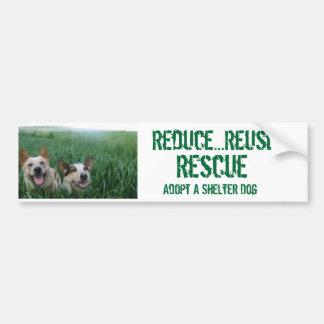 Wheatdogs Car Bumper Sticker
