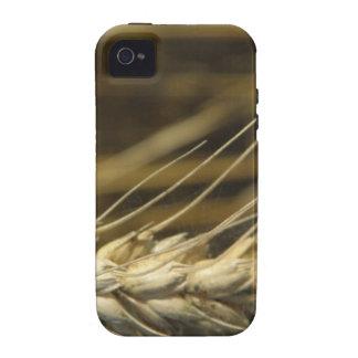 wheatear Case-Mate iPhone 4 fundas