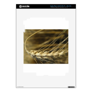 wheatear iPad 3 pegatinas skins