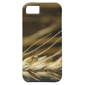 wheatear iPhone 5 Case-Mate funda