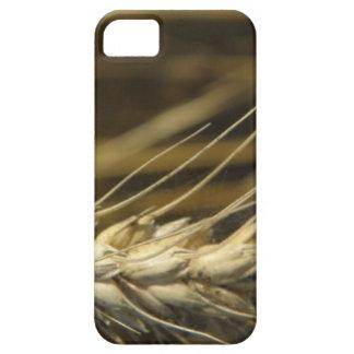 wheatear iPhone 5 Case-Mate fundas