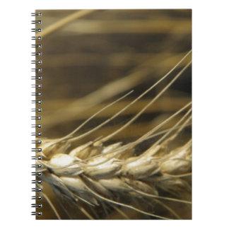 wheatear libros de apuntes con espiral