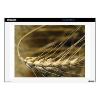 wheatear portátil 43,2cm skins