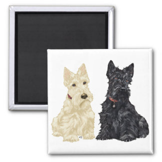Wheaten and Black Scottish Terriers 2 Inch Square Magnet