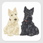 Wheaten and Black Scottish Terriers Square Stickers