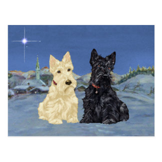 Wheaten Black Scotties Christmas Postcard