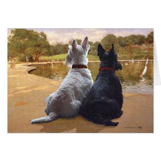 Wheaten & Black Scottish Terriers Greeting Card