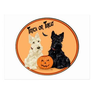 Wheaten & Black Scottish Terriers Halloween Postcard
