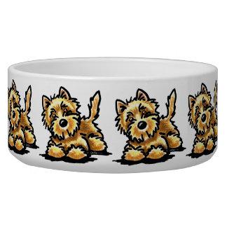 Wheaten Cairn Terrier Bowl