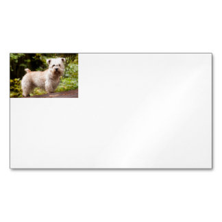 Wheaten_glen_of_imaal full.png magnetic business card