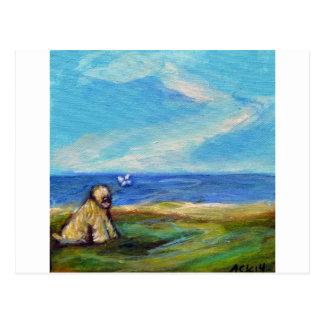 Wheaten Ocean Breeze Postcard