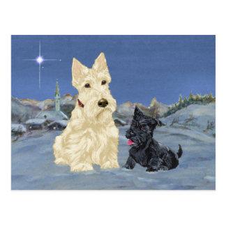 Wheaten Scottie and Pup Christmas Postcard