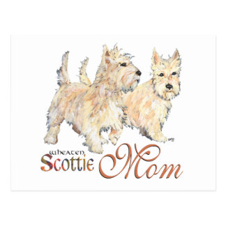 Wheaten Scottish Terriers for Mother's Day Postcard