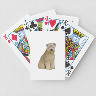 Wheaten Terrier (B)  (sit) Bicycle Card Deck
