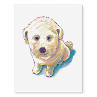 Wheaten terrier crossed with poodle whoodle dog temporary tattoos