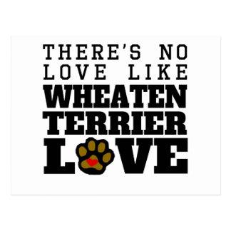 Wheaten Terrier Love Postcard