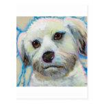 Wheatens entiende arte colorido del perro de la di postal