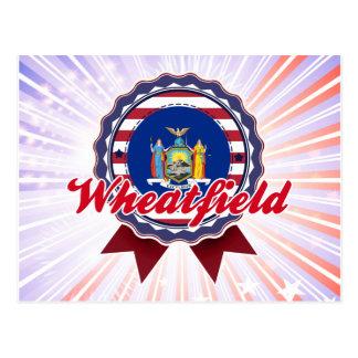 Wheatfield, NY Tarjeta Postal