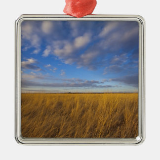 Wheatgrass and dramatic skies at Freezeout Lake Metal Ornament