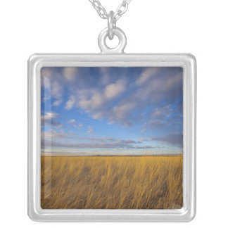 Wheatgrass and dramatic skies at Freezeout Lake Square Pendant Necklace