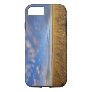 Wheatgrass y cielos dramáticos en el lago funda iPhone 7