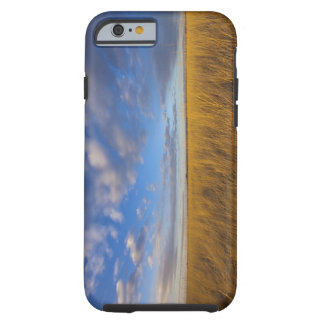 Wheatgrass y cielos dramáticos en el lago funda resistente iPhone 6