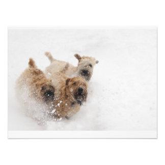 Wheaties in Snow Photographic Print