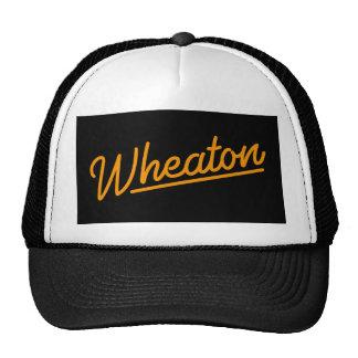Wheaton neon light in orange trucker hat