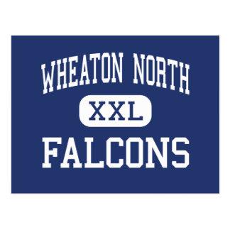 Wheaton North - Falcons - High - Wheaton Illinois Postcard