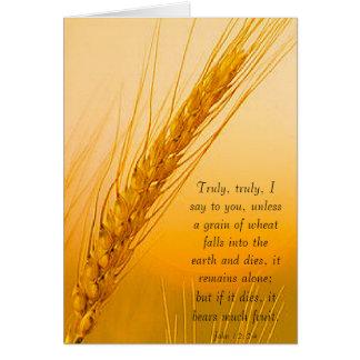 WheatSun Tarjeta De Felicitación