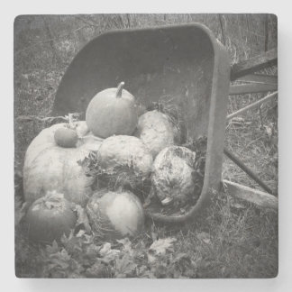Wheel Barrow and Left Over Pumpkins in Autumn Stone Coaster