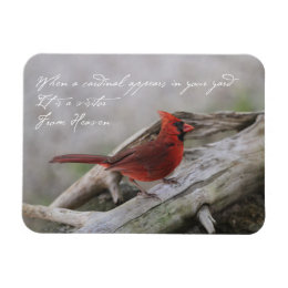 When a Cardinal appears in your yard… Magnet