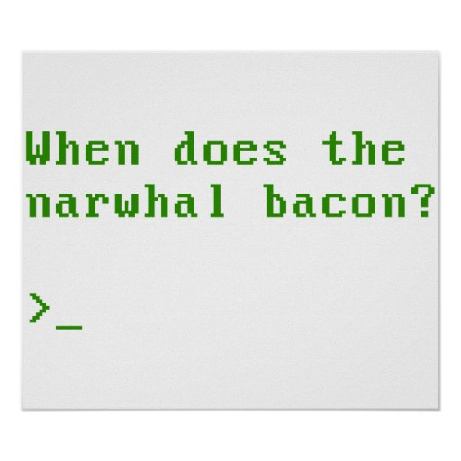 When Does the Narwhal Bacon VGA Reddit Question Poster